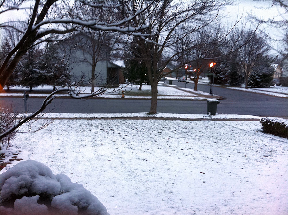 pic of snowy front yard at home
