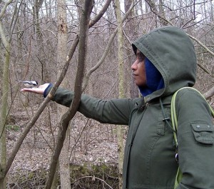 Michelle feeding chickadees out of her hand
